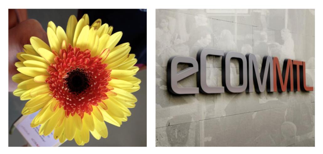 eComMTL 2015 - fleur